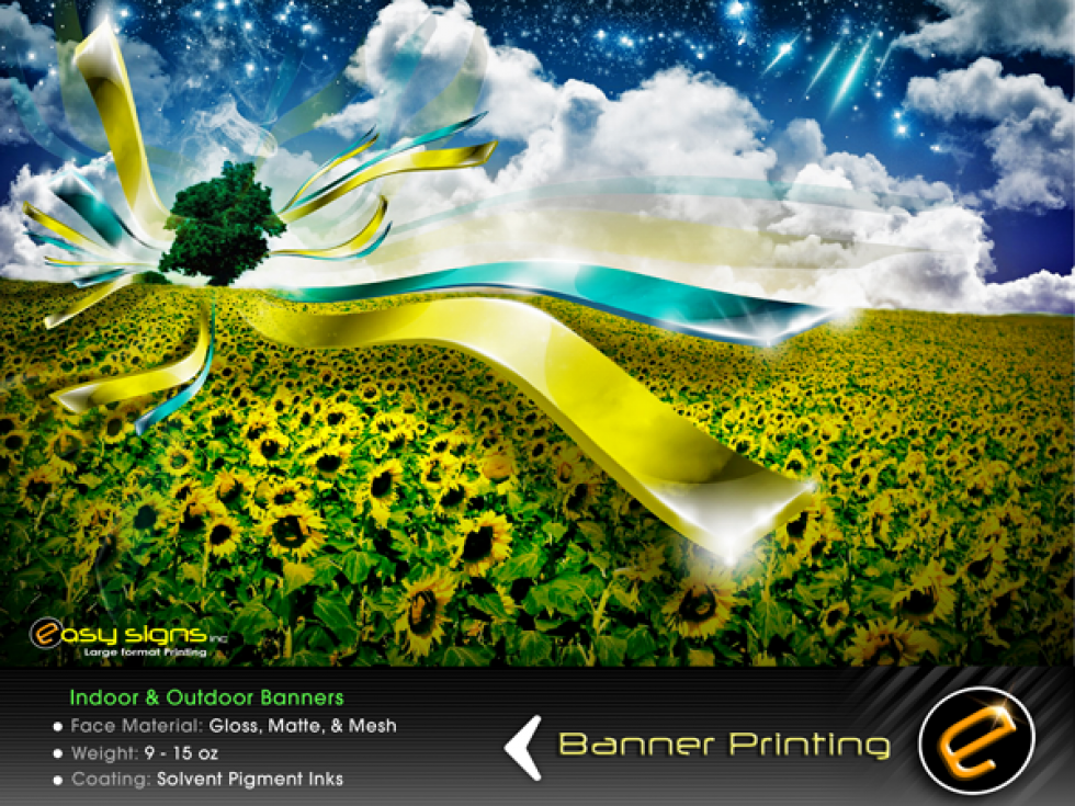 Banner Printing Companies: What's Right for You?