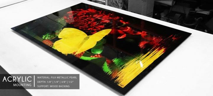 12acrylic_artworkprinting